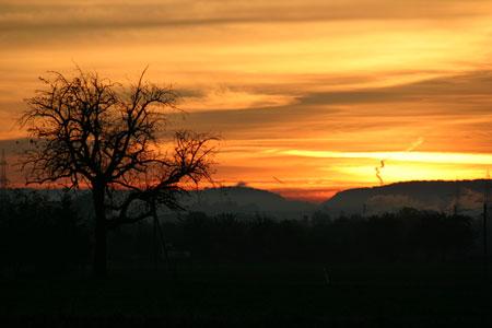 Sm_sunrise