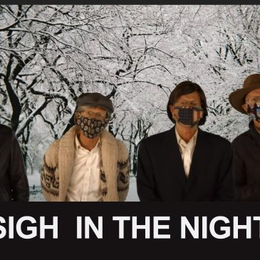 SIGH IN THE NIGHT – A parody of Silent Night
