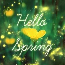 hello spring 4