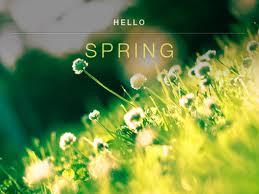 hello spring 8