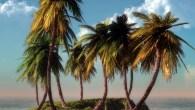 Il y a dix jours, j'étais en Haïti par 30 °C – sans avoir avecmoi aucun de mes vêtements d'été, séjour improviséoblige. Ce matin, quelque peu inconscient, je suis sorti […]