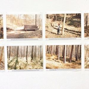 Juergen Teller: «Irene im Wald», Bubenreuth 2012 at Kunstpalais Erlangen