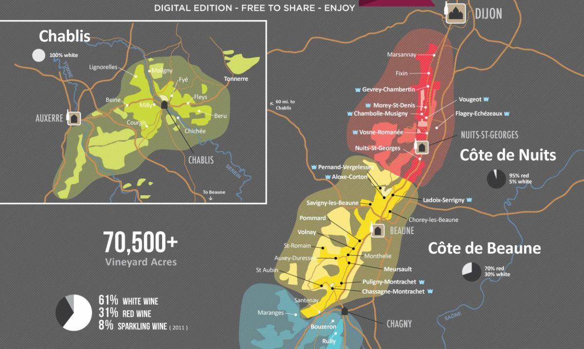 Gran degustazione di cinque Pinot Nero di Borgogna
