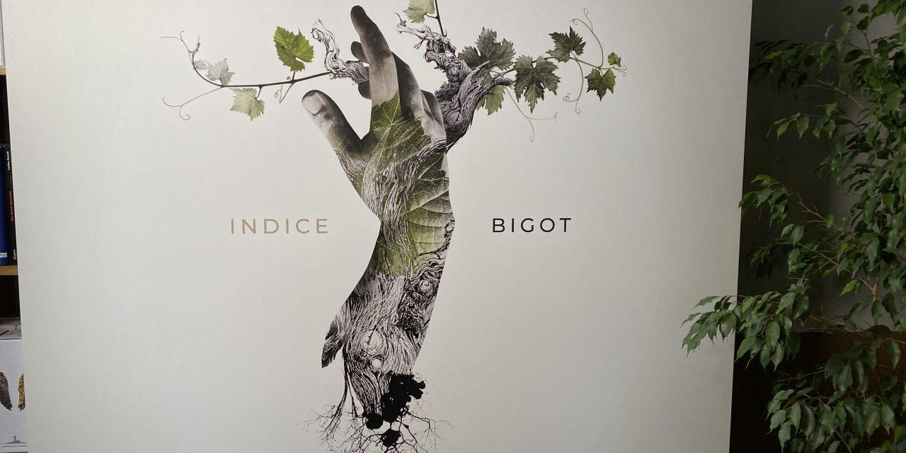 Indice Bigot: il futuro del vino è nei numeri