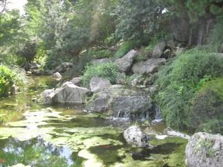 Giardino giapponese orto botanico Roma