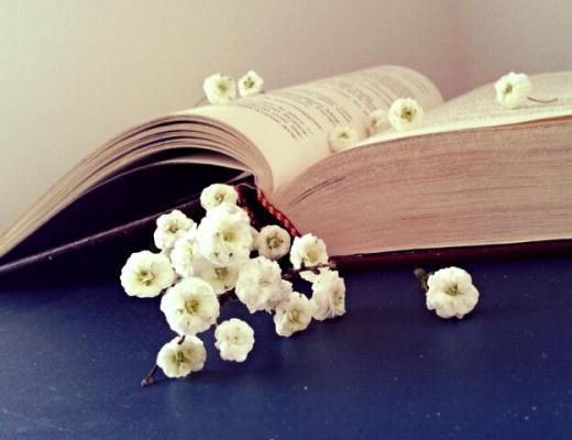 La figlia di Mistral di J. Kratnz: il vento, il libro, la poetessa