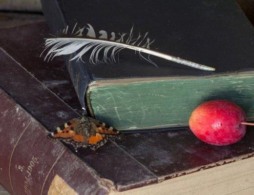 curriculum-del-lettore-marzo-strategico-ed-educativo