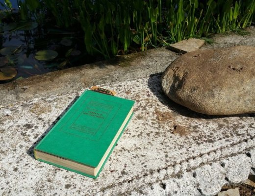 leggere-l-amante-di-lady-chatterley-di-david-herbert-lawrence