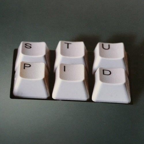 Internet ci rende stupidi? Nicholas Carr, Raffaello Cortina Editore