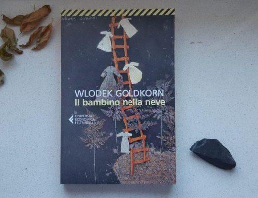Il bambino nella neve di Wlodeck Goldkorn: memoria, vuoti e silenzi