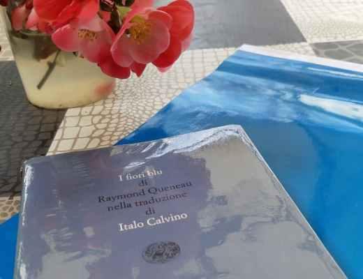 I fiori blu di Raymond Queneau: storia e romanzo da sogno