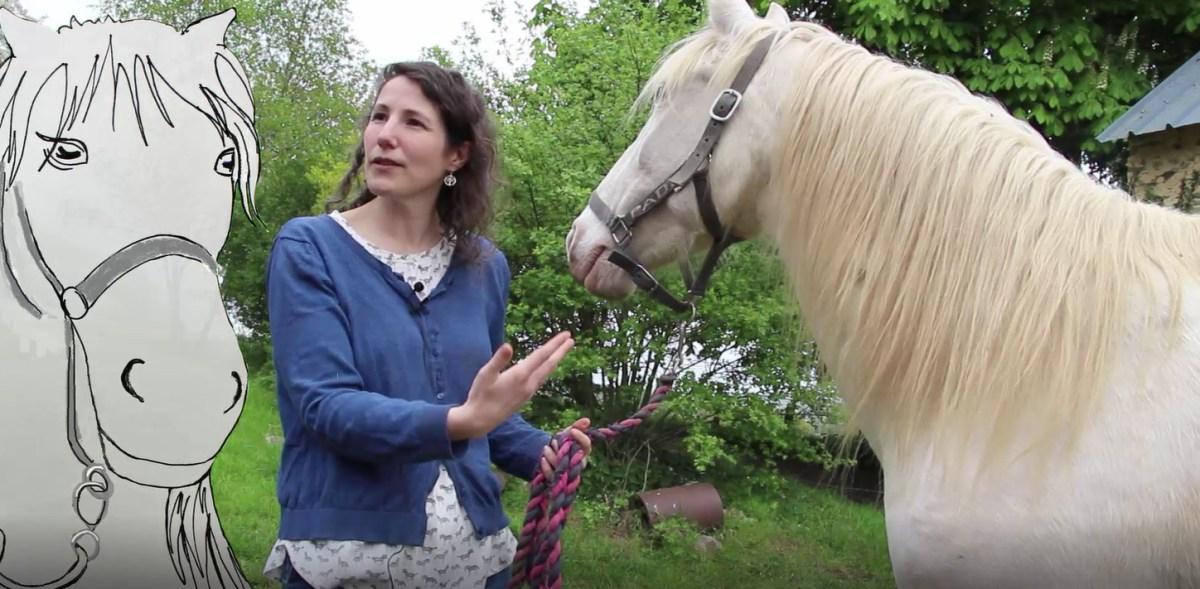 Delphine «Le cheval, le corps et la psychanalyse»