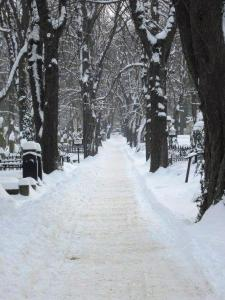 Path through snow covered Olsanke cemetary