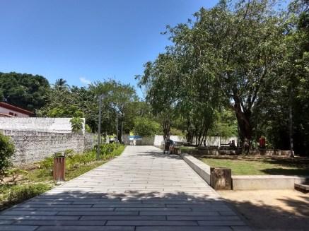 O Jardim do Baobá. Foto: Maíra Brandão