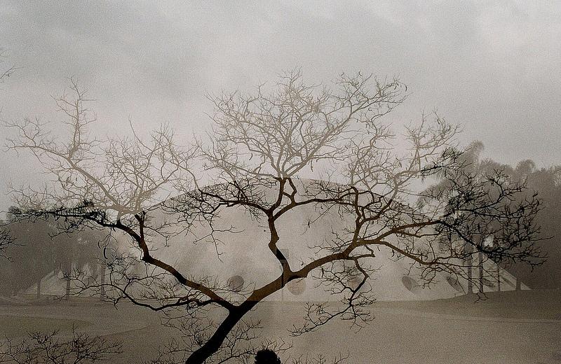 Foto de Lu Misirac