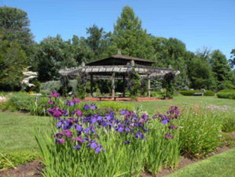 Jardim de plantas perenes, Elizabeth Park. Foto: Roberto Carvalho de Magalhães.