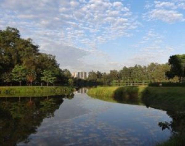 Parque Ibirapiera. Foto: Nando Bastos.
