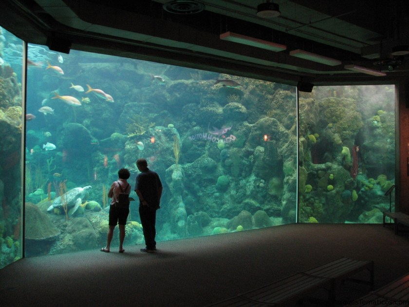 The Florida Aquarium en Tampa