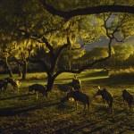 Mamá Experta: DISNEY'S ANIMAL KINGDOM LODGE JAMBO HOUSE