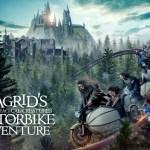Hagrid's Magical Creatures Motorbike Adventure, en Wizarding World of Harry Potter el 13 de junio 2019