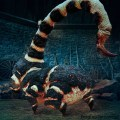 The Blast-Ended Skrewt in Hagrid's Magical Creatures Motorbike Adventure