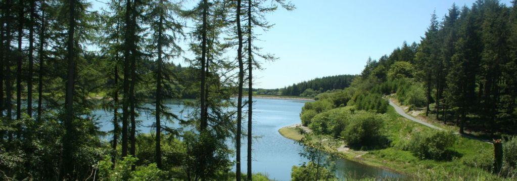Whistlandpound Reservoir