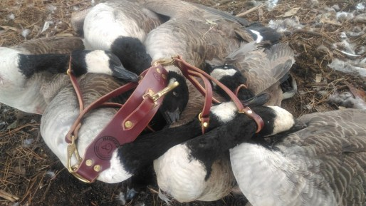 Otis Leather Co. game carrier thanks to my lovely wife and some geese.