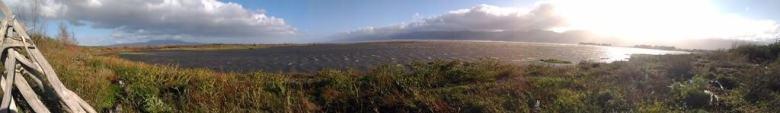Lake Wairarapa 1