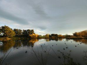 sunset across the pond