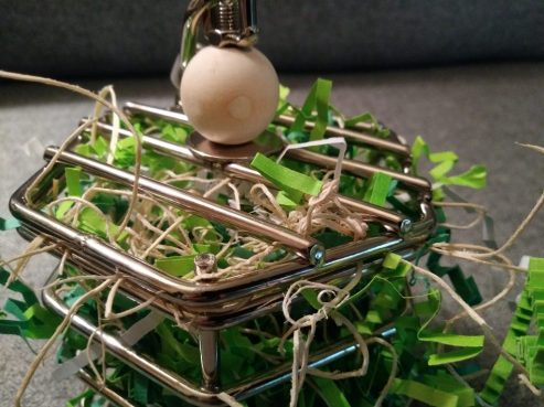 the best foraging toys for parrots