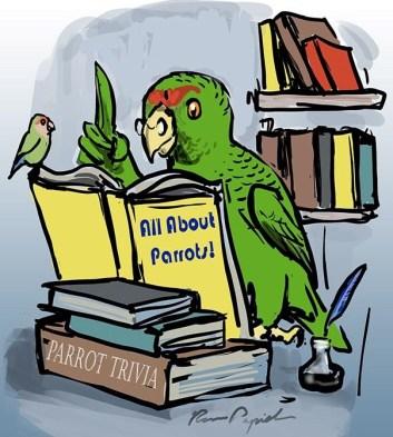 parrot trivia night