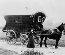 Mr. Brothers was a 59er in Colo. and is called the father of Wheat Ridge tosh wagon & horse.