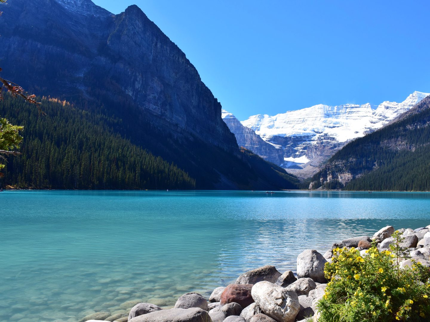 Part-time traveller at Lake Louise in Canada