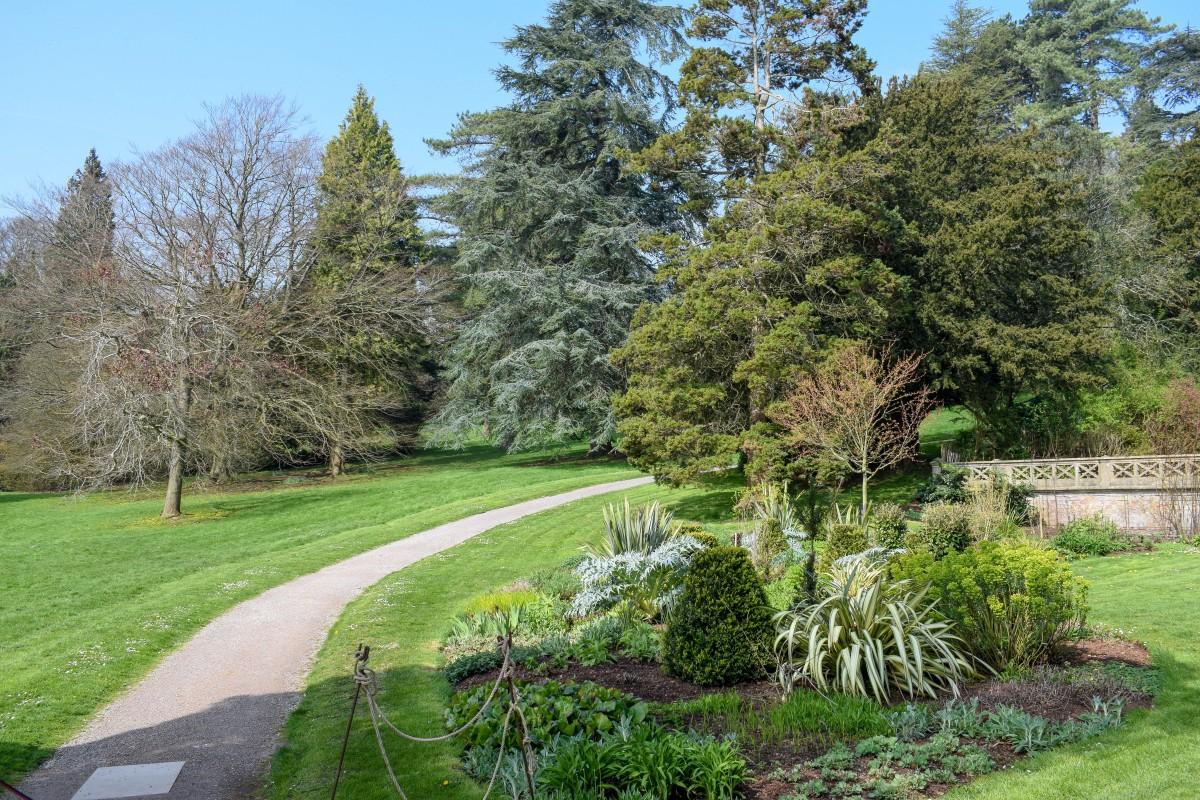 Tyntesfield garden walks