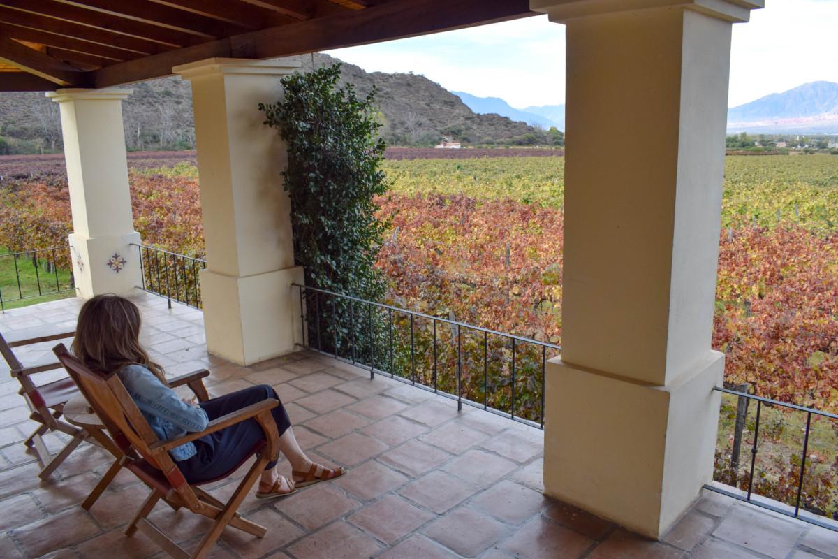 View of vineyards from Vinas de Cafayate wine resort in Argentina