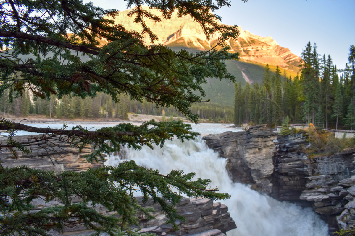 Athabasca Falls Icefields Parkway Canada-2