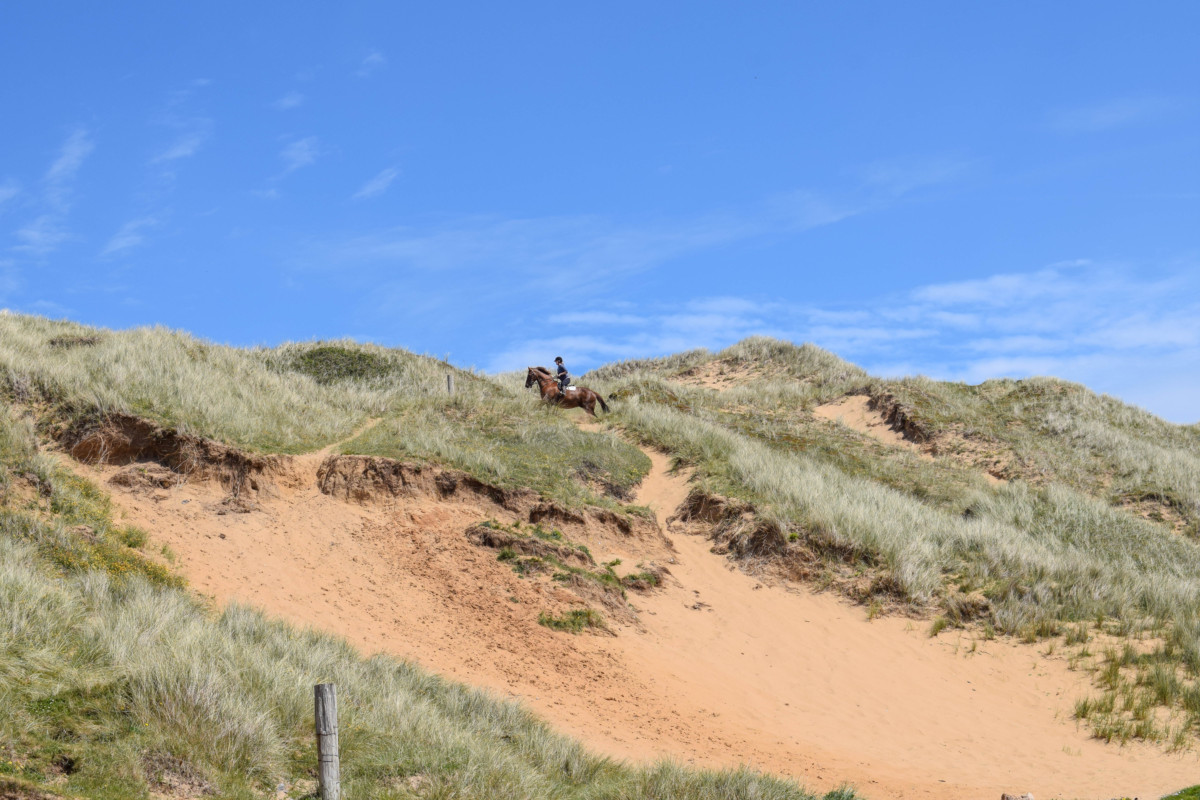 horse riding in the Gower Pennard Cliffs Wales