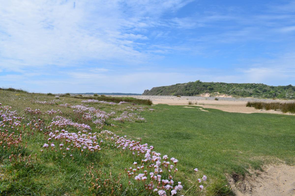 Three Cliffs Bay hike Gower Wales