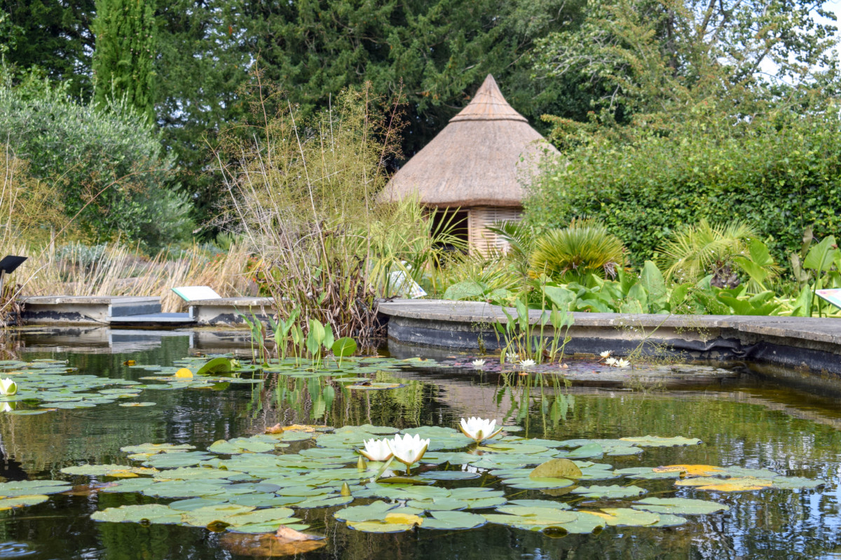 Bristol Botanic Gardens