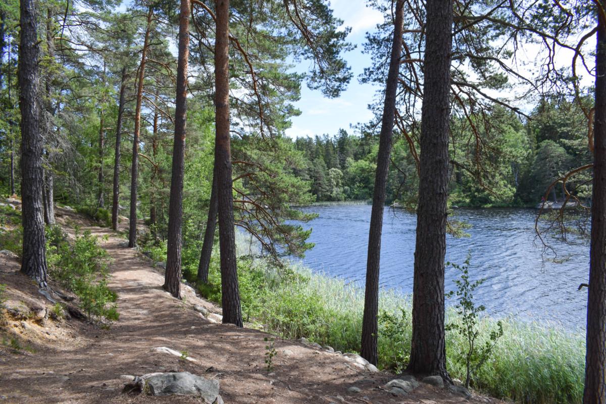 Domarudden Sweden day trip from Stockholm