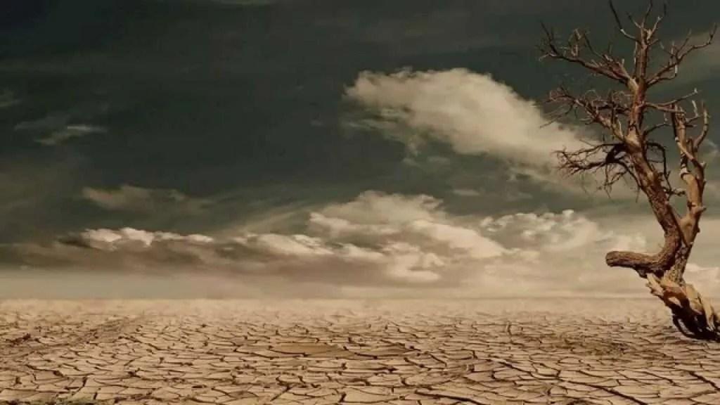 Résultats de recherche d'images pour «envahisseurs veulent nous enlever : et faire de nos terres un vrai désert»