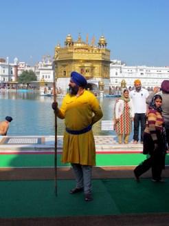 Una guardia Sikh del Tempio d'Oro di Amritsar, nel Punjab indiano. Il Tempio d'Oro  il luogo pi sacro per la religione Sikh. ANSA/Mimmo Torrese