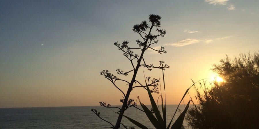 tramonto ischia