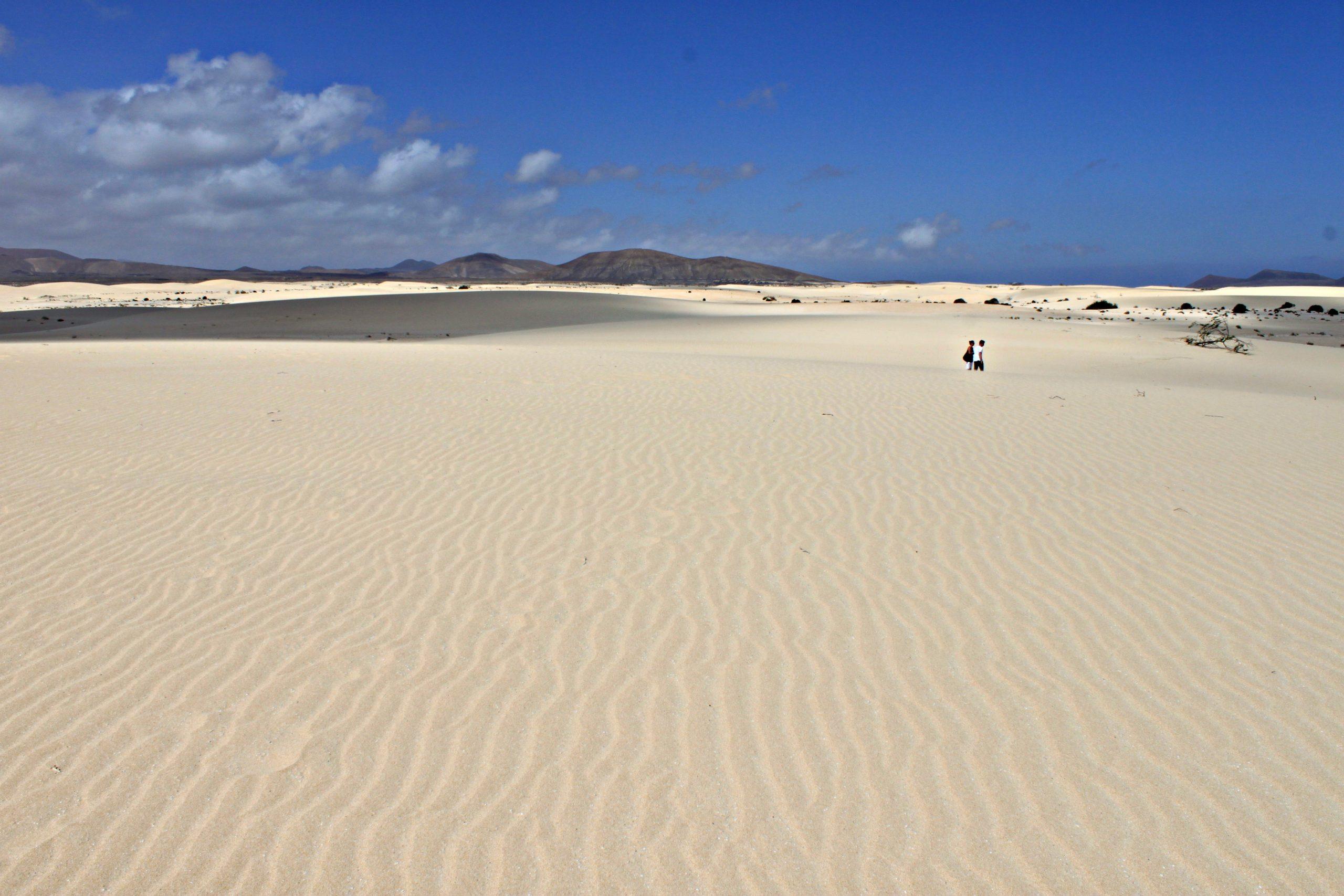 Isole Canarie: Fuerteventura