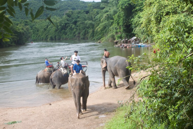 There were quite a few Elephants in the River Kwai when we reached there riding Lali