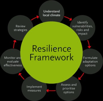 resilience 5