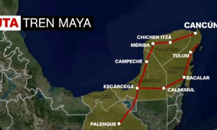 Piden ambientalistas e investigadores realizar estudios previos para construir el Tren Maya