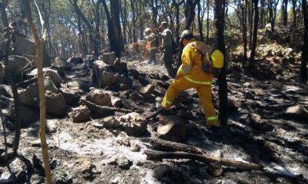 Más de mil hectáreas afectadas por incendio en La Primavera