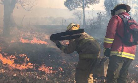 Reportan 14 incendios activos en todo el país