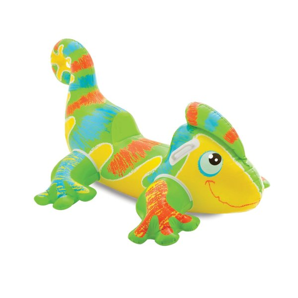 smiling gecko pool float